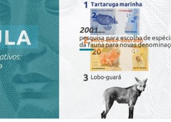 Foto: Divulgação Banco Central