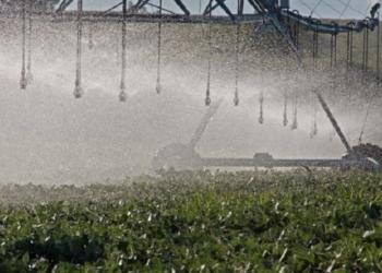Irrigação é importante instrumento para manter a produção em períodos de pouca chuva - Foto: Fernando Dias / Seapdr