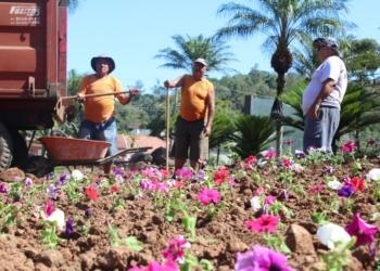 Flores serão plantadas em diversos pontos da cidade  Foto: Lilian Moraes