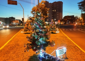 Foto: Comunicação Prefeitura de Igrejinha