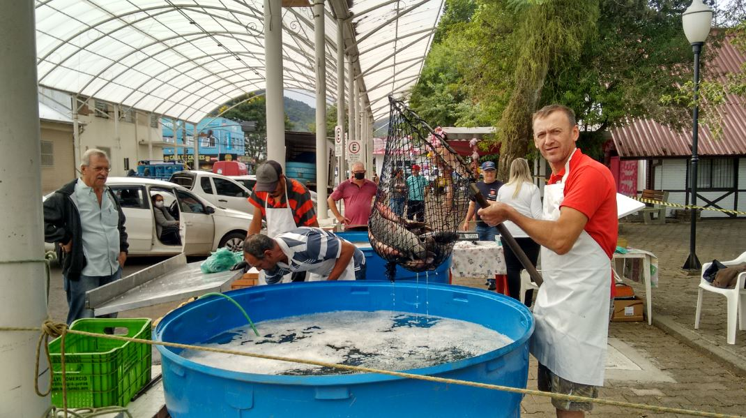 Feira do Peixe Vivo anteriormente ocorria na praça central Foto: ARQUIVO/EMATER-ASCAR IGREJINHA