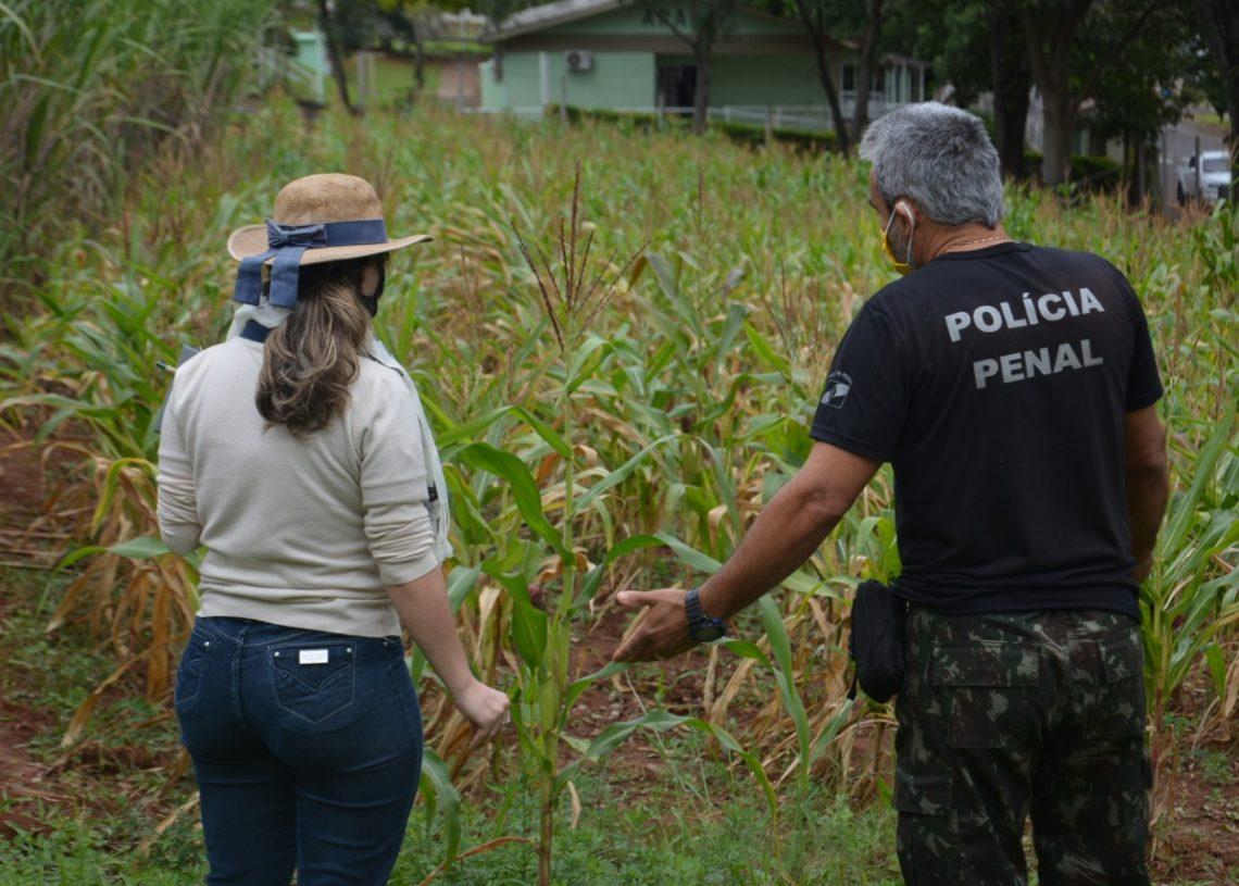 Visita foi realizada no presídio para avaliação do solo. Créditos: William Coelho