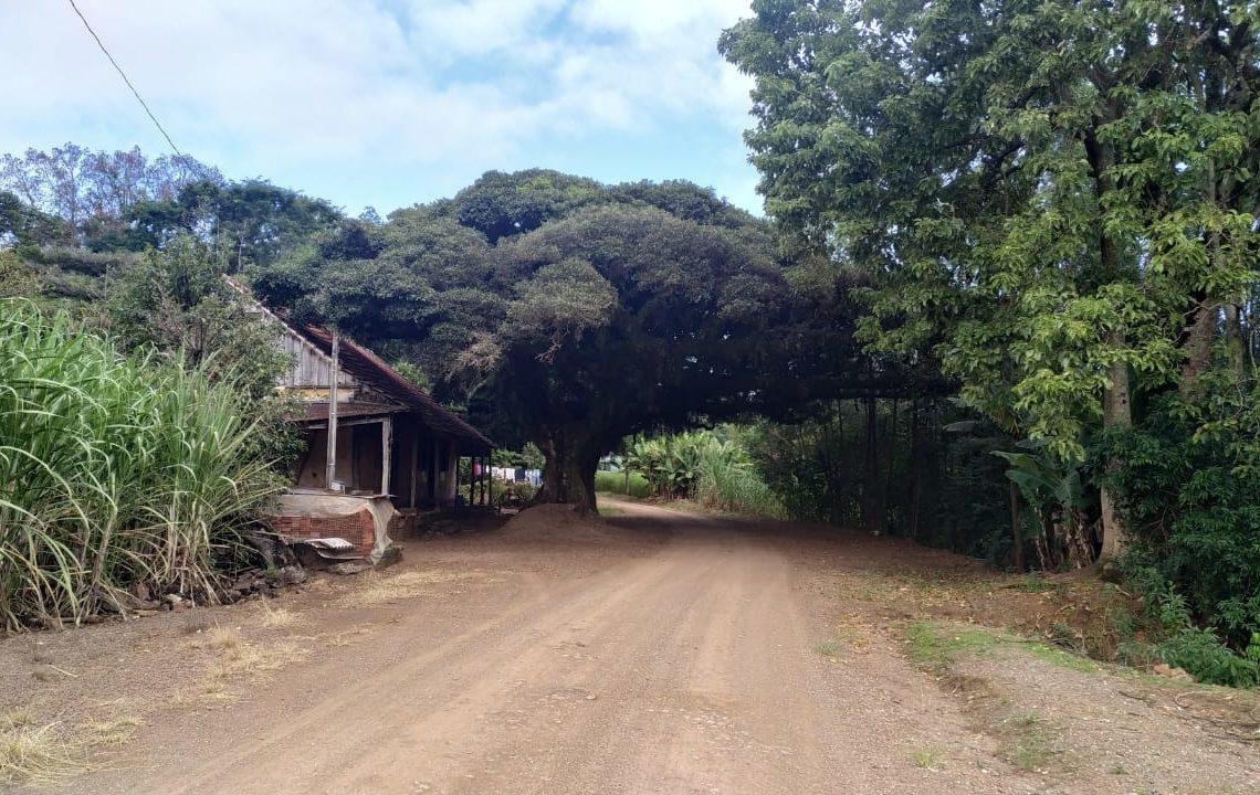 Trejeto irá explorar interior do município. Na foto, localidade de Ilha Nova Foto: Divulgação / ATAC