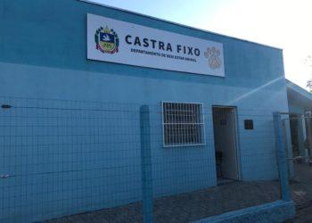Castrafixo será o principal local de atendimento para animais em situação de rua Foto: Cássios Schaab/JR