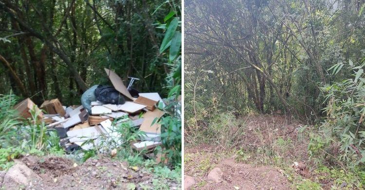 Antes e depois da limpeza. Foto: Divulgação