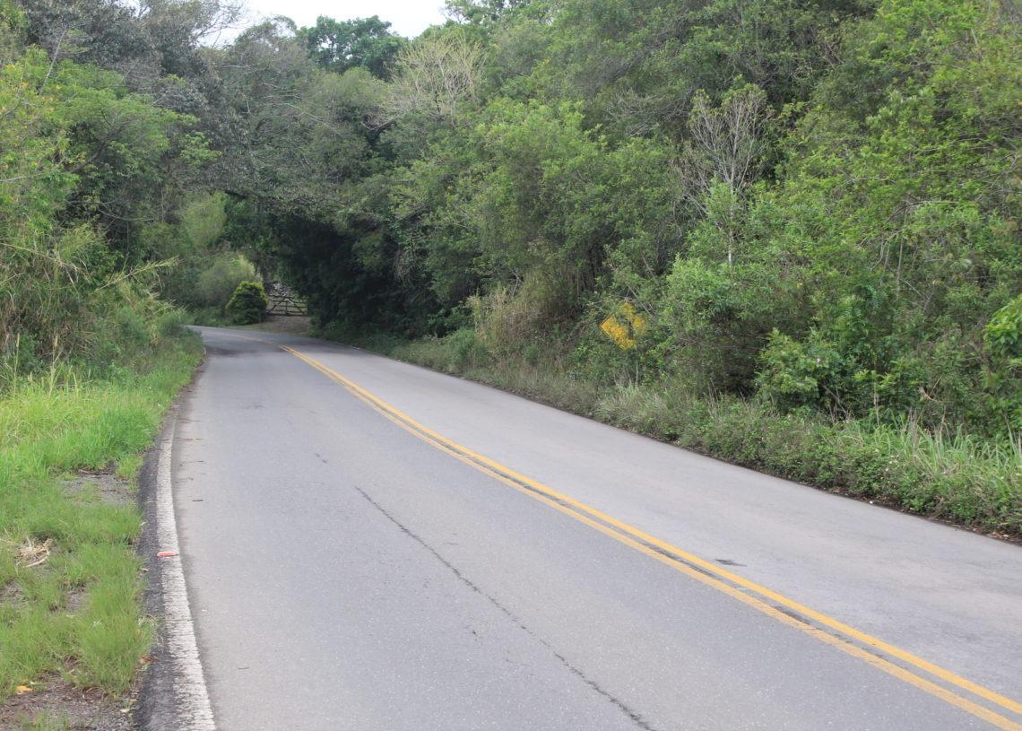 Rodovia sofre com falta de manutenção  Foto:  Matheus de Oliveira